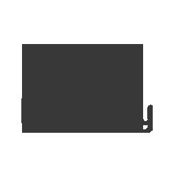 delta-city-overlay